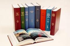 Periodicals - Standard